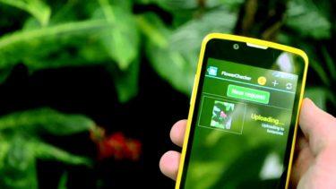 Лучшие приложения для садоводов и огородников