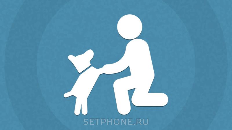 Лучшие приложения для владельцев домашних животных
